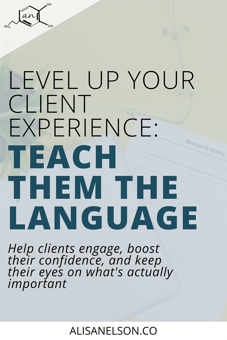 Client experience is an important aspect of your business - but it's more than website design. Every person you work with needs you to help them navigate the language of your field. Are you making sure your clients feel confident and capable or are they wandering around lost, stuck, and confused? Instead of getting frustrated by their questions or lack of follow through, make it a priority to educate. Read on for tips on how to incorporate education into your client experience from learning methods down to the details. Help clients engage, boost their confidence, and keep their eyes on what's actually important. Read more at http://alisanelson.co