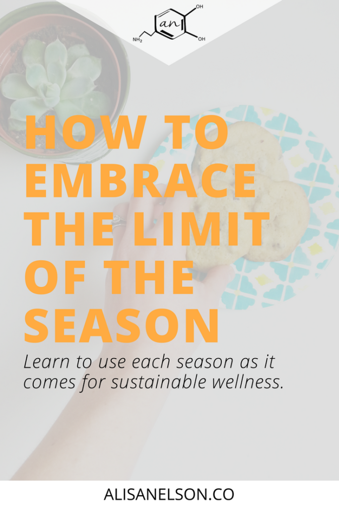 Sustainable wellness can only come if you're willing to embrace - not resist - the present. Read more: http://alisanelson.co